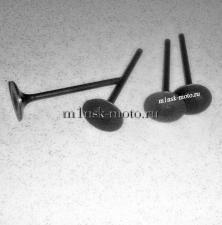 Клапан выпускной  (Х250)